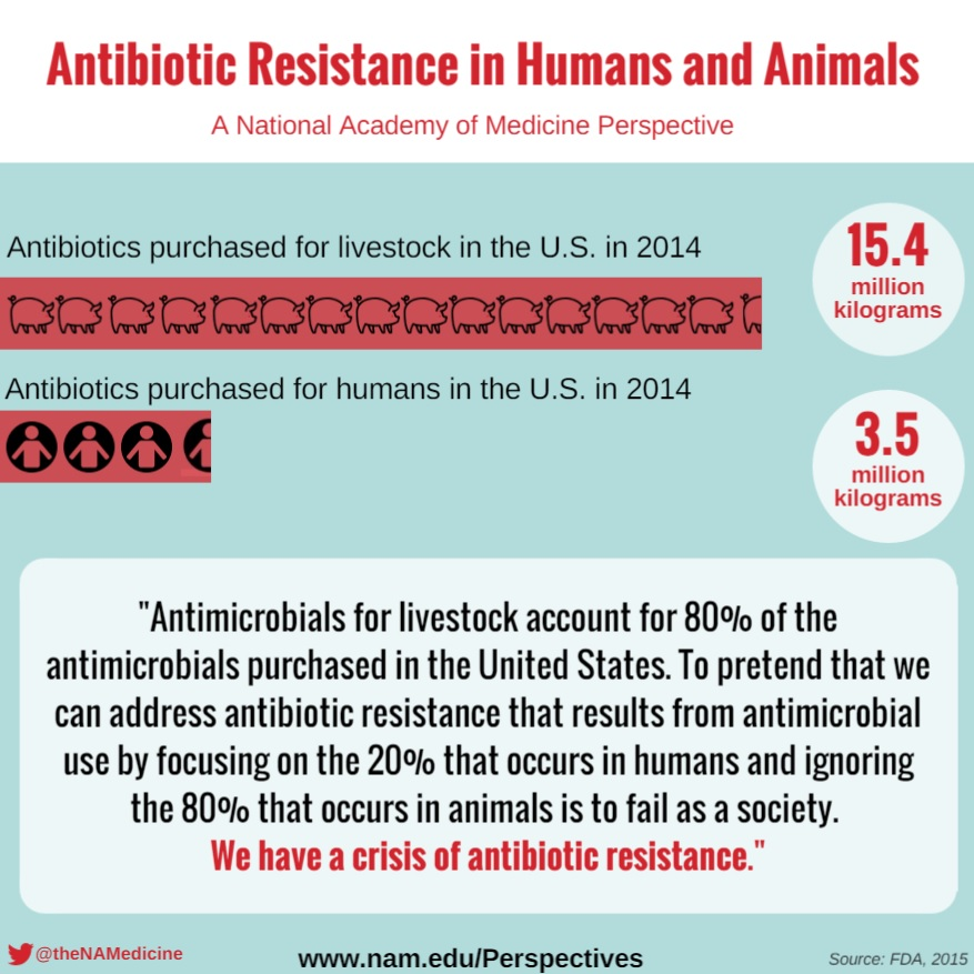 Antibiotic Resistance in Humans and Animals