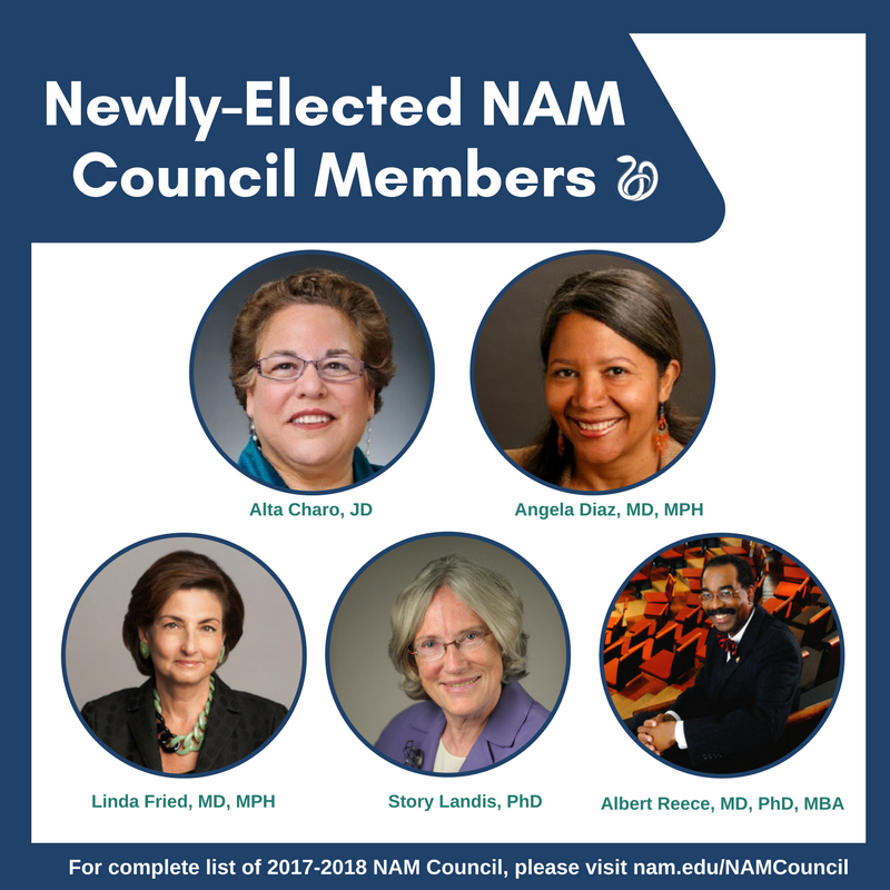 nam-council-new