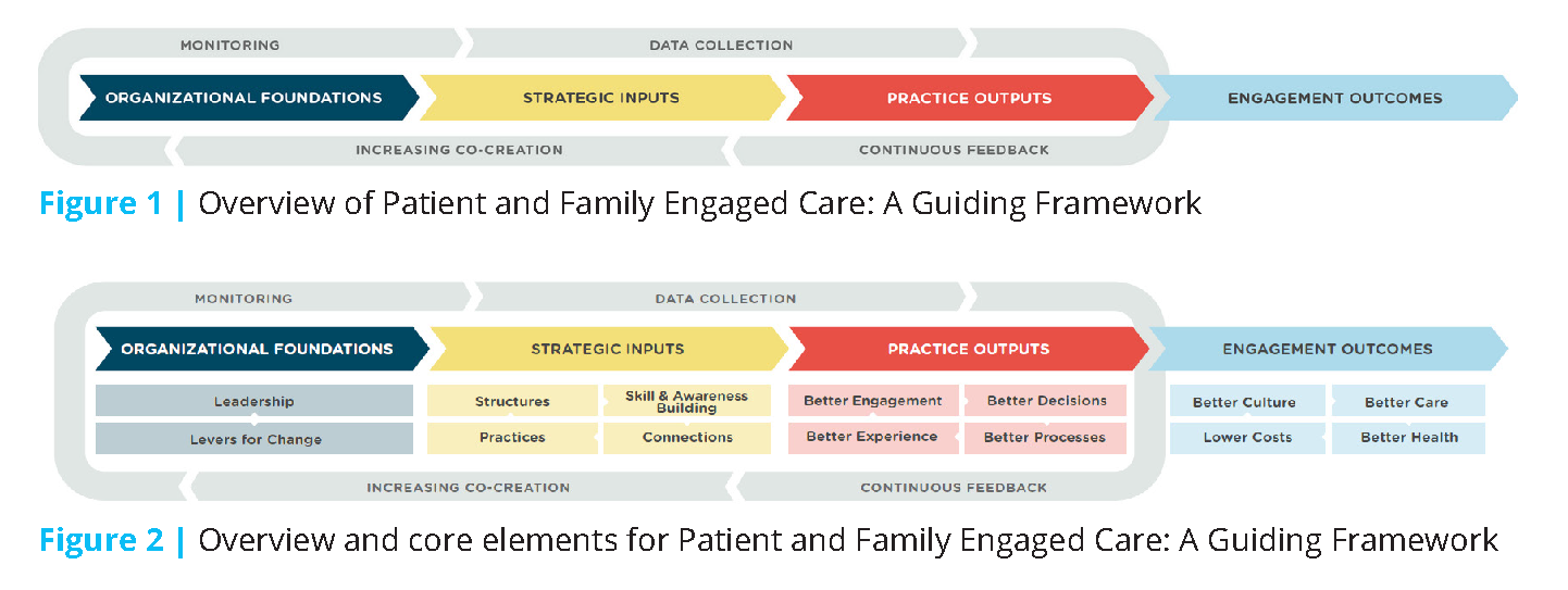 Harnessing Evidence And Experience To Change Culture A Guiding Framework For Patient And Family Engaged Care National Academy Of Medicine