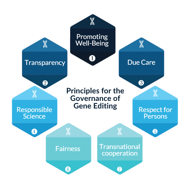 governance principles graphic
