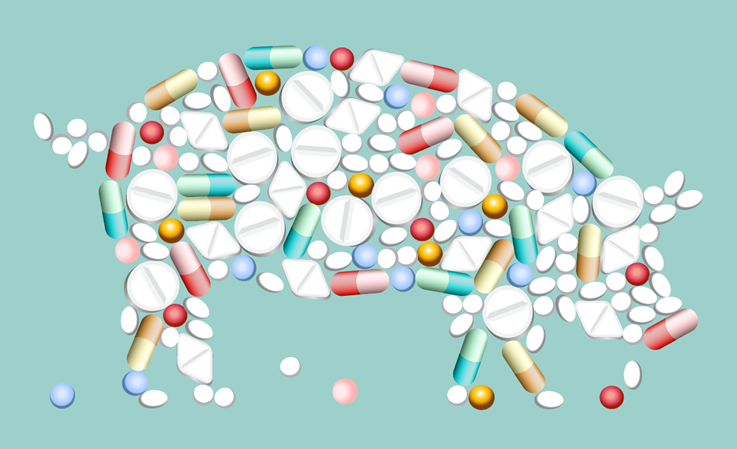 Interventions Aimed at Reducing Antimicrobial Usage and Resistance in Production Animals in Denmark