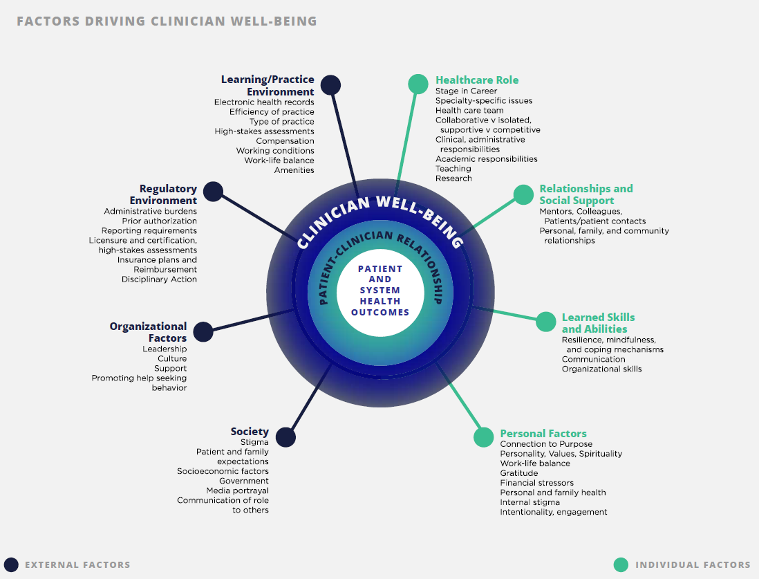 Establishing Clinician Well-Being as a National Priority ...